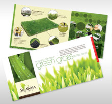 savanna-grass-graphic