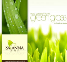savanna-grass